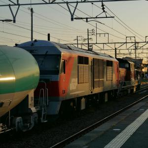 養老鉄道でポタリング7 夕暮れのDD51とDF200
