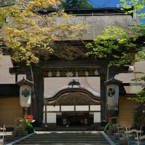 『高野山・世界遺産きっぷの旅』4 金剛峯寺~奥之院