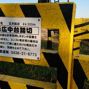 海士有木駅に続く坂道にて