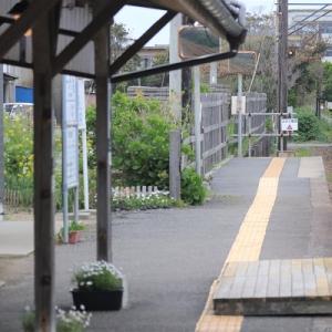 京王、伊予鉄と流転。終の棲家は銚子電鉄でしょ?
