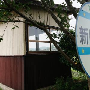 花咲く新田野駅にて