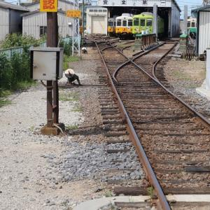 レトロ電車だけではない。古参が集う仏生山