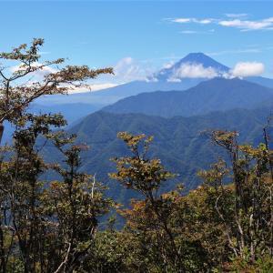 滝子山|道証地蔵登山口から秀麗富嶽十二景滝巡りコースに挑戦!