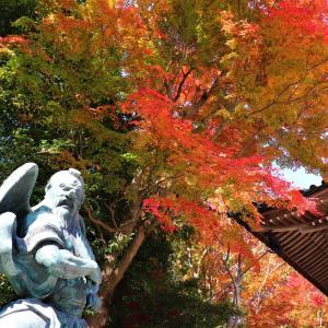 高尾山|絶景の紅葉とパワースポットを求めて秋の高尾山漫喫!高尾山名物天狗ドッグと天狗ビールも最高!