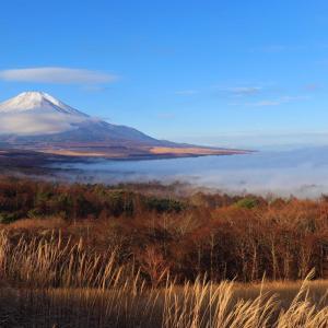 鉄砲木ノ頭(明神山)|パノラマ台駐車場から絶景の富士山を求めて高指山周回コースに挑戦!