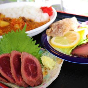 本栖湖グルメ|ジビエ料理で有名な松風に人気の鹿カレーセットランチを食べに行って来ました!
