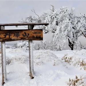 塔ノ岳・丹沢山|大倉尾根から霧氷の丹沢雪景色を求めて雪山登山に挑戦!