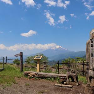 大野山|絶景の富士山と日本の滝百選「洒水の滝」を眺めに牧場ハイキングに挑戦!
