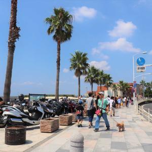 江の島観光|江の島周辺は女子が好きそうな食べ歩きグルメスポットの宝庫でした!