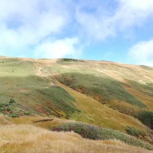 百名山「巻機山」に登って来ました‼️