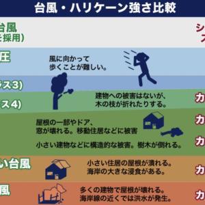 台風対策!一日250円の台風保険