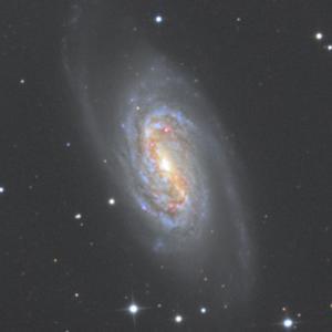しし座のNGC2903銀河