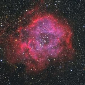 ビクセンED103S で撮った ばら星雲