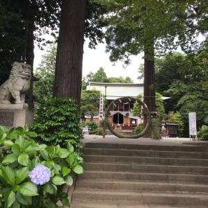夏越しの大祓   比々多神社さん