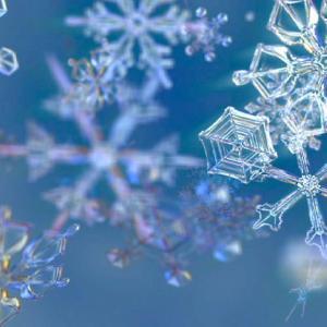 雪の結晶。それは空から舞い降りる宝石