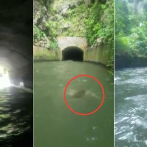 まじびびる! 用水路を猛スピードで追ってくる女の幽霊 プエルトリコ
