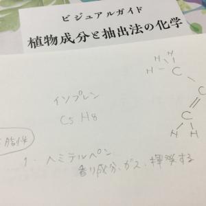 学び:フィトケミカル成分について理解を深めると・・・