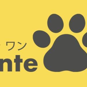 犬用ハーブティー ラコンテワン