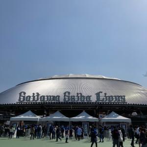 3.19オープン戦 西武対DeNA  108 28 38
