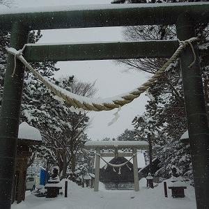近所の神社に初詣