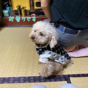 梅雨も まぁいっか (*^m^*)