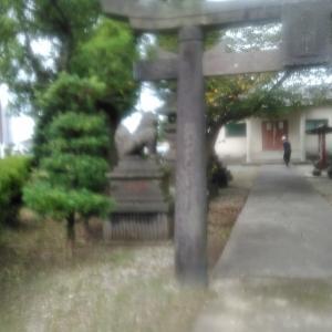 公園・駅裏・神社・公民館で草刈り 植木剪定