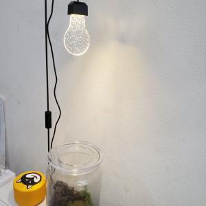 おしゃれな植物栽培ライト『ルーチェ』入荷しました!