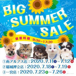 Big Summer Sale!開催中!