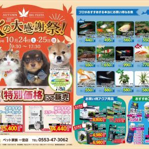 24日(土)、25日(日) ペット家族一宮店 秋の大感謝祭!