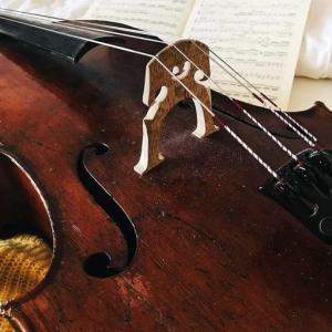 バッハは圧倒的な天才として演奏家を怯えさせたり、 父親のように罪を咎めるようなところがあります。と語る、フランスのバロック・ヴァイオリニスト、 エレーヌ・シュミットの検証
