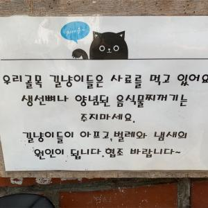 韓国語で「野良猫」は