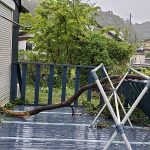 台風15号、被災。