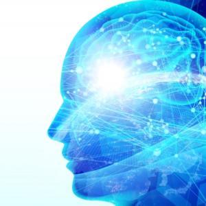 メタ認知・脳科学の可能性