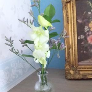 「Bloomee LIFE」ポストにお花が届く新体験❀お花の定期便❀