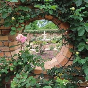 ローズガーデン、ラストはポタジェとその他の花々