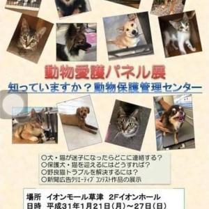 滋賀県動物保護管理センターパネル展