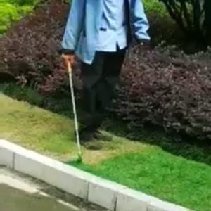 中国の緑化を生で見た