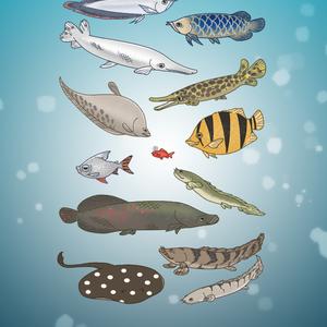 【LINE着せかえデビュー!】古代魚大型魚が好きなあなたに贈る着せかえ