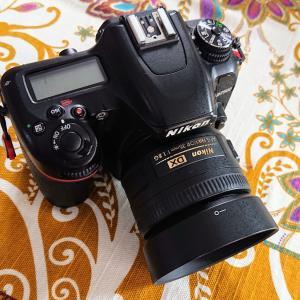 タイのlazadaで、SIGMA 30mm F1.4 DC を買う。