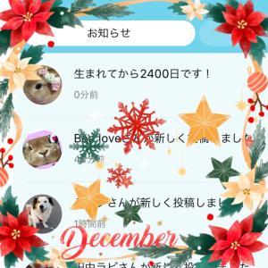 2400日ଘ(੭*ˊᵕˋ)੭* ੈ♡‧₊˚