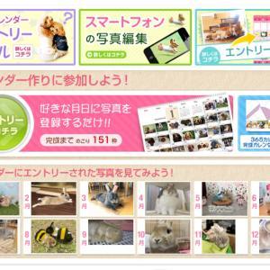 365カレンダー(*´∀`)♪