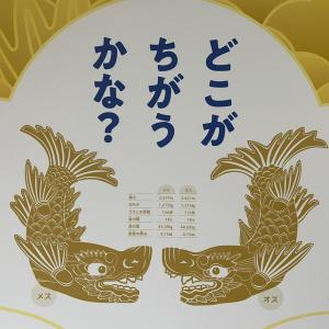 豪華絢爛 「本丸御殿」!!