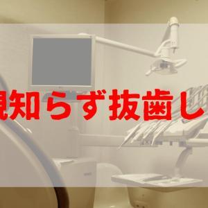 【歯医者通院日記1】歯が痛い!! 2年ぶりに歯医者に行って親知らずを抜いてきた