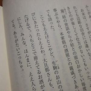 大島真寿美『渦 -妹背山婦女庭訓魂結び-』読了