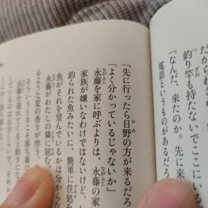 入間人間『安達としまむら(1)~(8)』読了