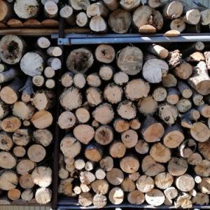 寒い。冬が来た。薪作りしたり、ダブルタングを研究したり、魚頂いたり