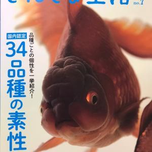 金魚生活最新号……と感想