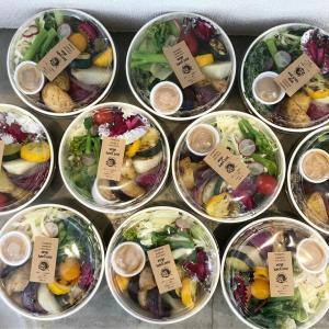 organic vege lunch納品しました