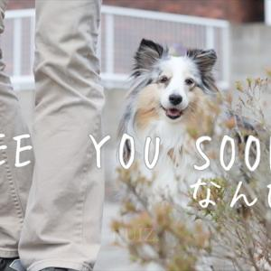 See you !soon!!