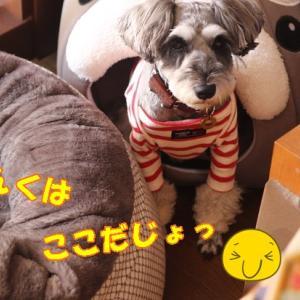 あっらぁぁぁーっ…☆